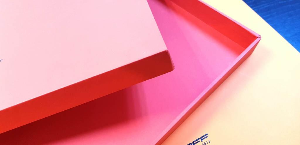 Cutii rigide pentru husa IPad-  8