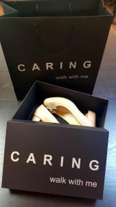 cutie de pantofi 2