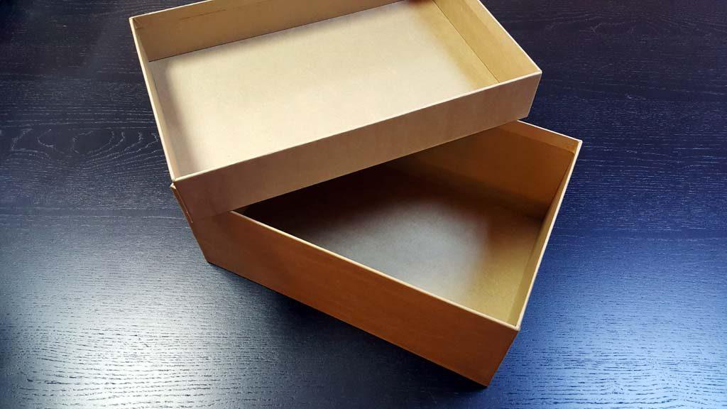 Cutia rigida cu capac pentru pantofi - 2