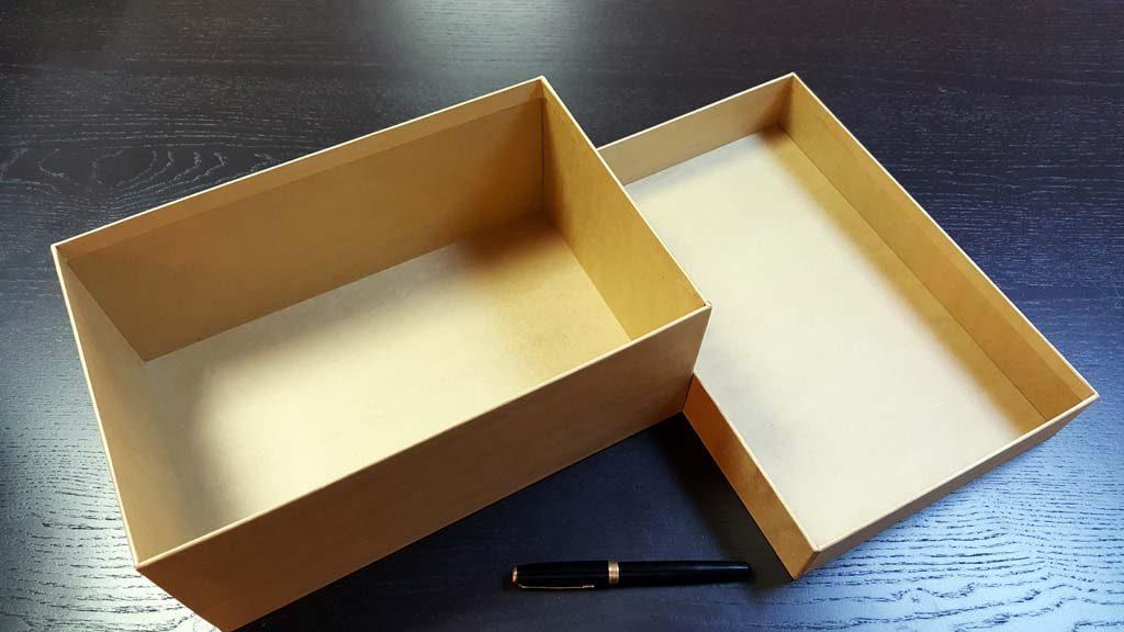 Cutia rigida cu capac pentru pantofi - 4